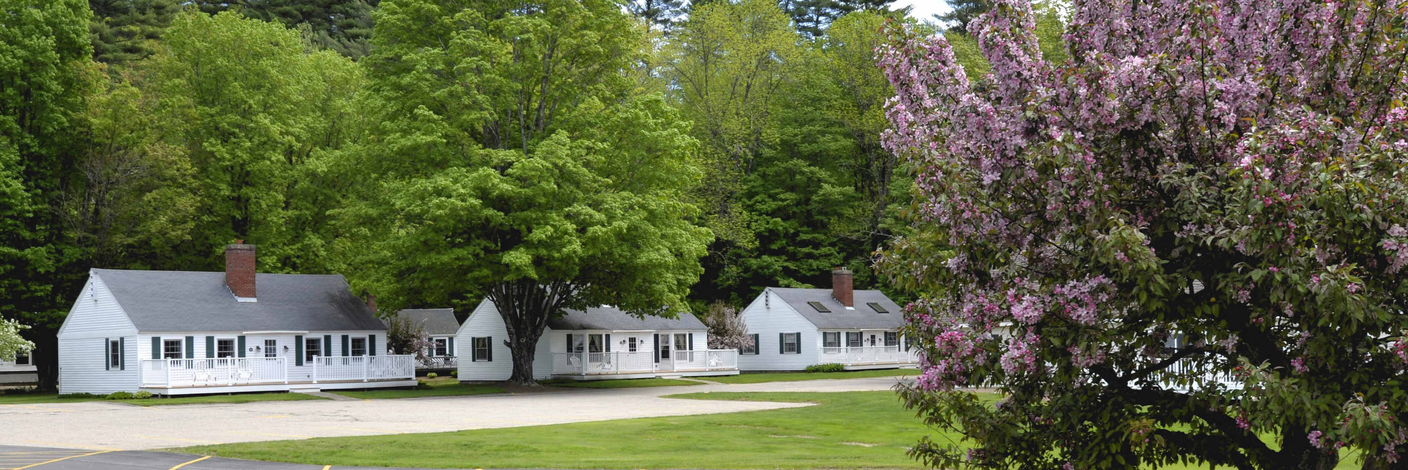 one rentals magalloway living lopstick nh cabins room cabin