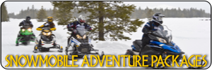 Take an exciting snowmobile trip with Northern Extremes